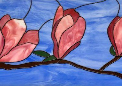 magnolias 3
